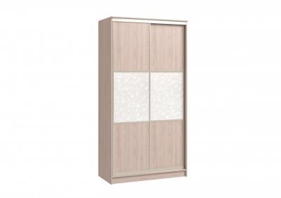 шкаф-купе 2х дверный (плёнка)