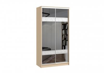 шкаф-купе 2х дверный (зеркало)